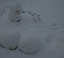 Dominant snowman by Roger Vaara