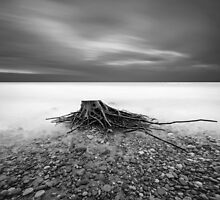 After the Storm by KLIMAS