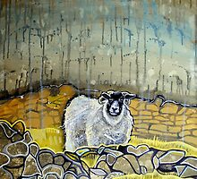Derbyshire sheep in the rain by Emily  Garces
