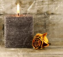 black candle and faded rose by danguf