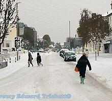 Eastbourne In Winter by Jeremy   Trickett.