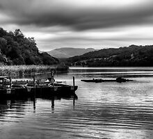 Esthwaite, Lake District by English Landscape Prints
