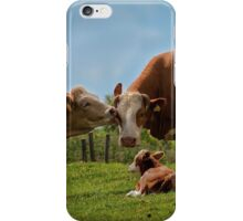 Kissin' cows iPhone Case/Skin
