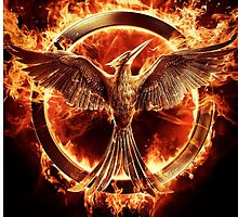 Mockingjay by Chelsea-P