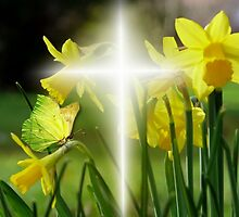 Easter Blessings by Morag Bates