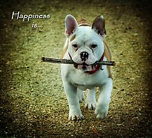Happiness Is... by Jordan Blackstone