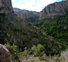 One of the Deep gorge  @  Isalo NP Madagascar by john  Lenagan