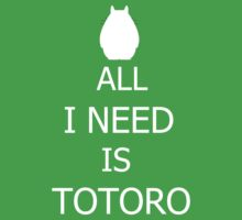 All I need is Totoro by Attare