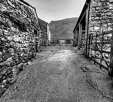 Wasdale Farm by Stephen Smith