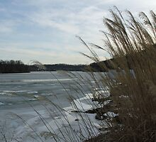 Winter on the Ohio River by Lynn Gedeon