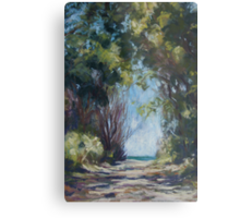 Beach Track on the road to Point Plomer Metal Print
