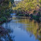 Blackwood Reflections #9, Bridgetown, Western Australia by Elaine Teague