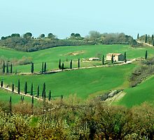 Toscana - Italy by Arie Koene