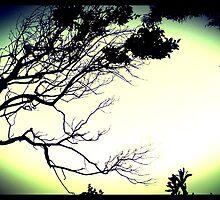 foliage aura  by carlymh
