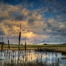 The Big Glow ~ Finley Refuge ~ by Charles & Patricia   Harkins ~ Picture Oregon