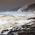 Force 10 Gunwalloe toward Porthleven  5.2.14 by Mike Honour