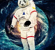 Astro Panda by societystyle