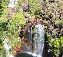 Florence Falls Litchfield National Park  , Northern Teritory Australia  by Virginia  McGowan