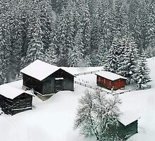 More snow expected by Arie Koene
