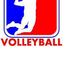Volleyball League Logo by kwg2200
