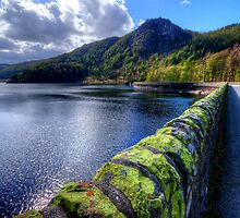 Thirlmere, Lake District by English Landscape Prints