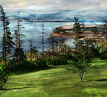 Cape Blomidon by Terry  Pellmar