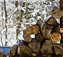 Small Stack of Wood in Snow by chelseysue
