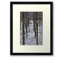 Standing Tall in the Snow Framed Print