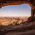 room with a view by jbiller