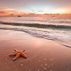 Star of the Sea by PeaceInArt