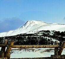 Snowy mountain top by raymona pooler