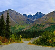 Alaska wilderness by raymona pooler