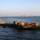 Rocks in the Mediterranean Sea by Segalili