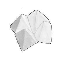Origami Fortune Teller  by chrisvalentine
