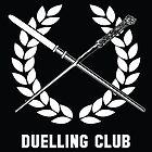 Hogwarts Duelling Club by stuffofkings
