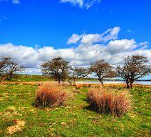 Hury Reservoir, TeesdaleHury Reservoir sits in Baldersdale in Upper Teesdale County Durham by English Landscape Prints