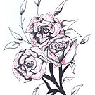 Quick sketch: roses by Perggals© - Stacey Turner