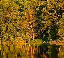 Ogle Lake Reflections 1 by mcstory