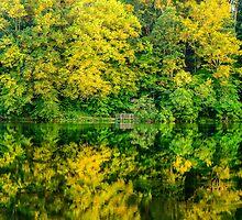 Ogle Lake Reflections 2 by mcstory