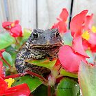Adorable Toad with little red flowers. by Barberelli