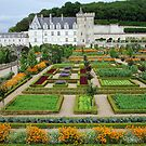 Villandry - France by Arie Koene