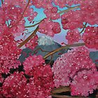 Cherry Tree in Bloom by towncrier