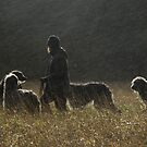 the wife an the dugs by joak