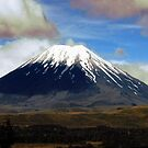 Snow capped mountian N.Z.  by Forfarlass