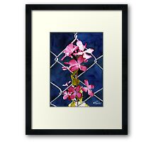 Entangled Framed Print