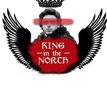 King in the North - Robb Stark by elektro