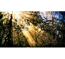 Mountain Light Photographic Print