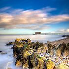 Isle Of Wight Landscapes by manateevoyager