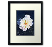 Billowy Framed Print