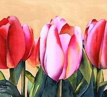Summer Tulips by Ken Powers